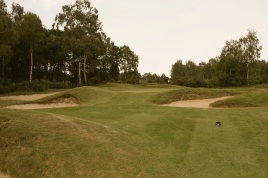 The view of the 15th green from the right-hand side of the fairway.