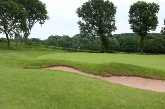 The view of the back half of the 8th green from the left-hand side.