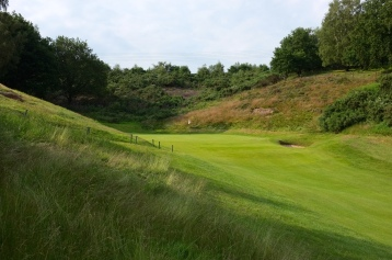 The view of the 15th green from the left-hand rough.