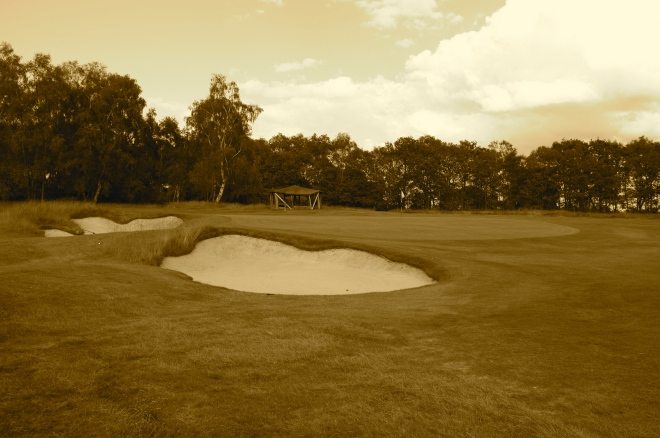 A view of the green at the par five 8th from front left.