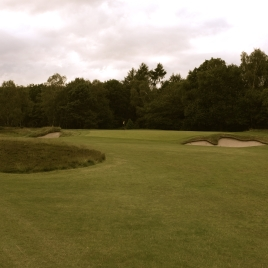 The view of the approach to the 14th green.