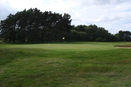 The view of the 6th green from back left.