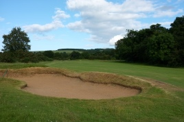The view of the 12th fairway from the left-hand rough.