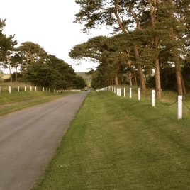 The view to the left (as you play the hole) of the road that bisects the 18th fairway.